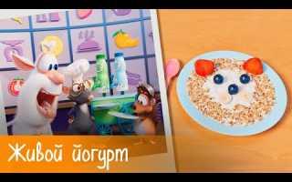 Буба — Готовим с Бубой: Живой йогурт — Серия 19 — Мультфильм для детей